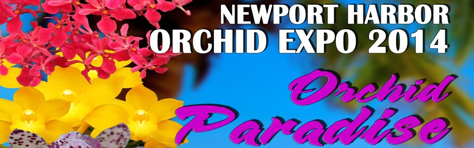 Newport Harbor Orchid Expo and Sale 2014