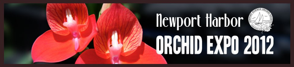 Newport Harbor Orchid Expo and Sale 2012