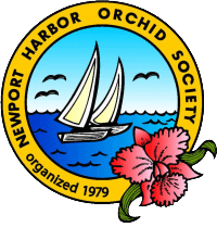 Newport Harbor Orchid Society Monthly Meeting