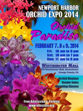 orchid_paradise_sm