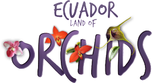 ecuador-land-of-orchids