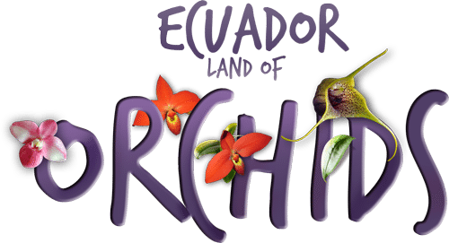 ecuador-land-of-orchids