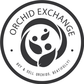Orchid Exchange