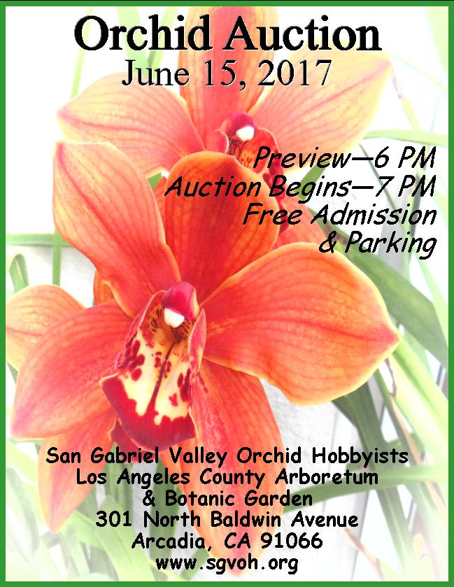 SGVOH-Orchid-Auction-2017