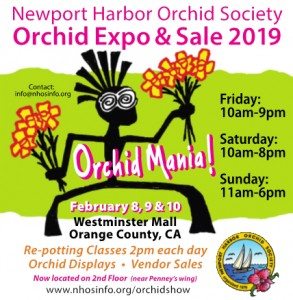 NHOS-EXPO-Flyer-2019-sq
