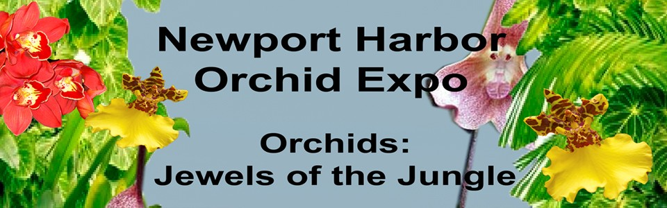 Newport Harbor Orchid Expo and Sale 2015
