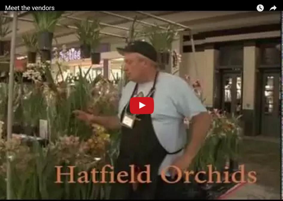 NHOS Meet the Vendors
