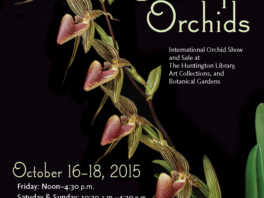 Huntington International Orchid Show 2015