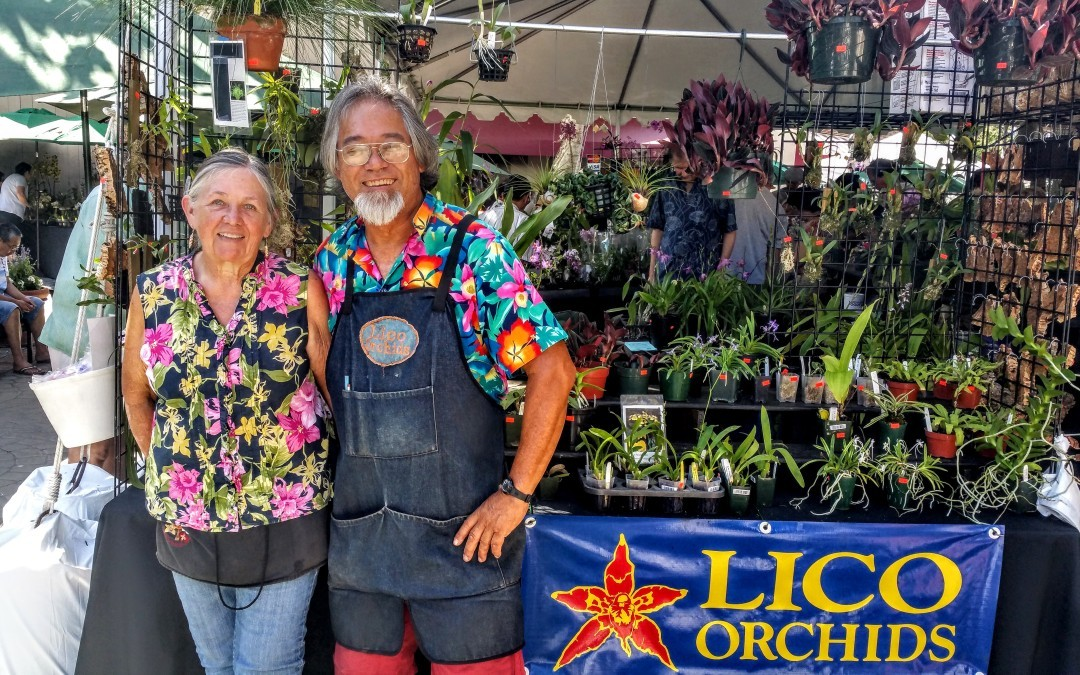 Members vending at Fascination of Orchids 2015