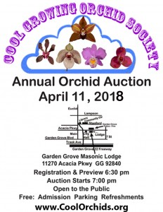 CGOS-Auction-2018